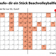 Kauft euch ein Stück Beachvolleyball-Feld ! :-)